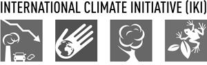 Logo IKI